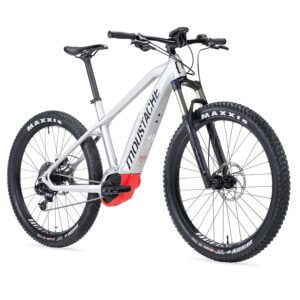 Electric Bike Rental