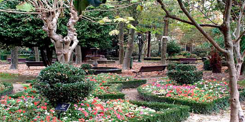 Resultado de imagen de jardín botánico caldas de reis